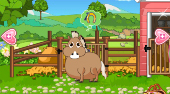 Cute Horse Hospital | Online hra zdarma | Superhry.cz