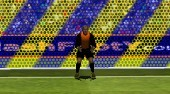 Penalty Fever 3D: World Cup